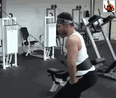 Watch New BroScience: What Your Gym Gear Says About You : bodybuilding GIF on Gfycat. Discover more related GIFs on Gfycat