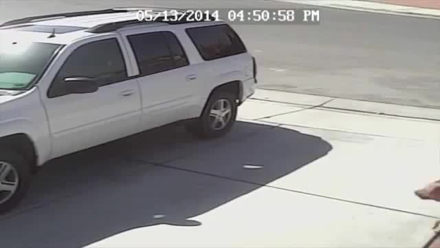 WTF, hitmanimals, Last night, some kind of animal ripped my car apart as it sat in the driveway. Story in image descriptions. What in the fuck. (reddit) GIFs