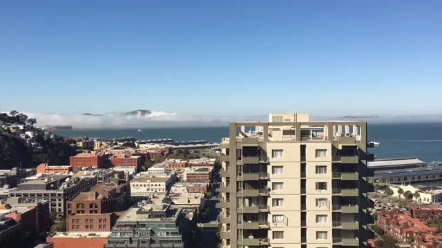 Watch and share San Francisco GIFs by livelymark on Gfycat