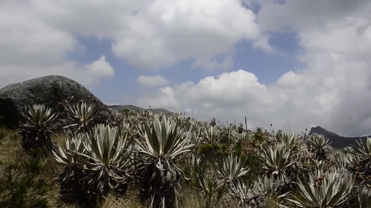 Parque Nacional Natural Chingaza By Outlanders Gif Gfycat