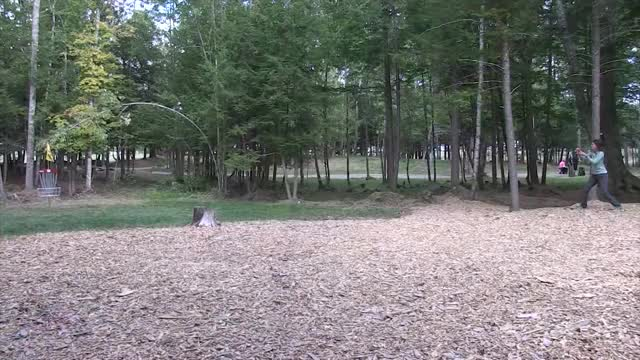 Watch and share The Disc Golf Guy GIFs and Video Blog GIFs by rprodart on Gfycat