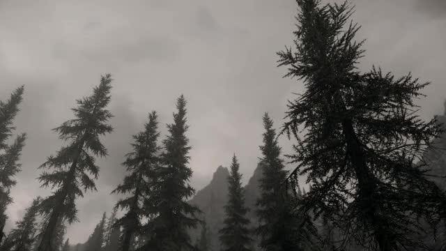 Watch and share Skyrim Special Edition 2019.03.11 - 18.43.48.01 GIFs by argoth on Gfycat