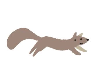 Watch Scurrying squirrel GIF on Gfycat. Discover more related GIFs on Gfycat