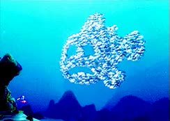 Watch and share Gifs Finding Nemo All GIFs on Gfycat