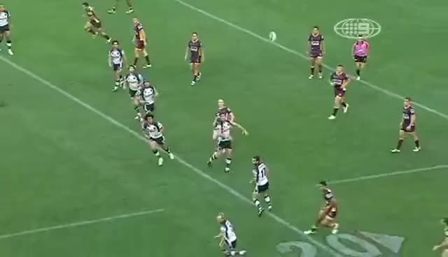 Watch and share Brisbane Broncos GIFs and Penrith Panthers GIFs on Gfycat