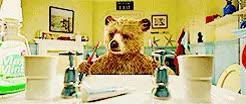 Watch Book Inspiration GIF on Gfycat. Discover more bear, ben whishaw, cute, gif, henry brown, hugh bonneville, jonathan brown, judy brown, julie walters, kawaii, madeleine harris, movie, movies & tv, mrs bird, my edit, paddington, red hat, samuel joslin GIFs on Gfycat