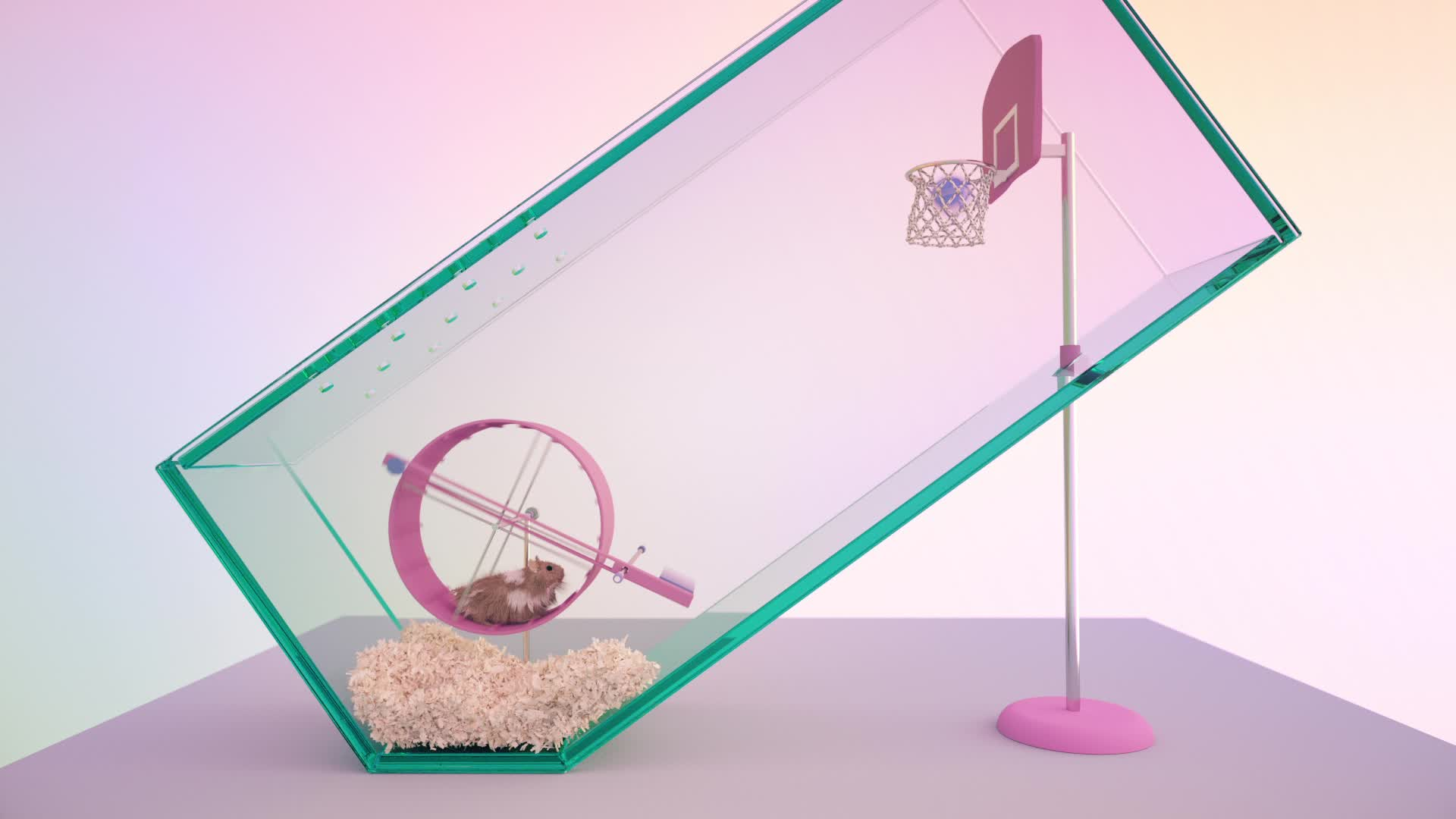 basketball, cinema 4d, hamster, octane, basketball GIFs
