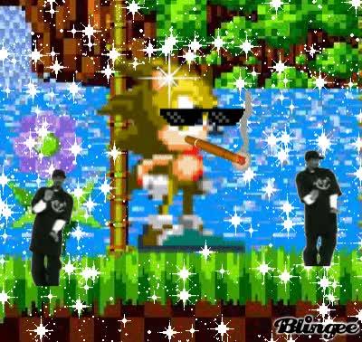 Watch and share Smoke Weed Hero-Sonic GIFs on Gfycat
