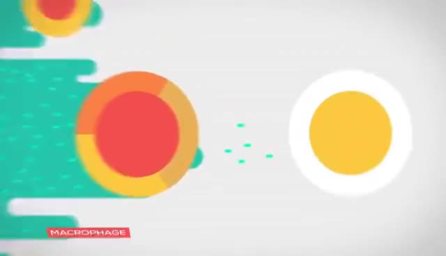 Watch and share The Immune System Explained I – Bacteria Infection GIFs on Gfycat