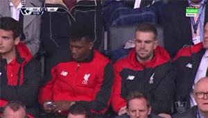 Watch Sturridge Mints GIF on Gfycat. Discover more related GIFs on Gfycat