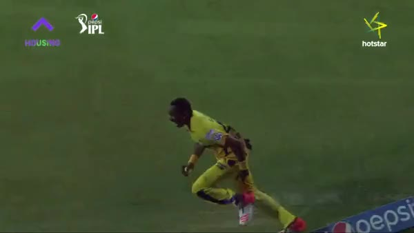 Watch Bravo's catch at the boundary GIF by @poochi on Gfycat. Discover more cricket, gifs GIFs on Gfycat
