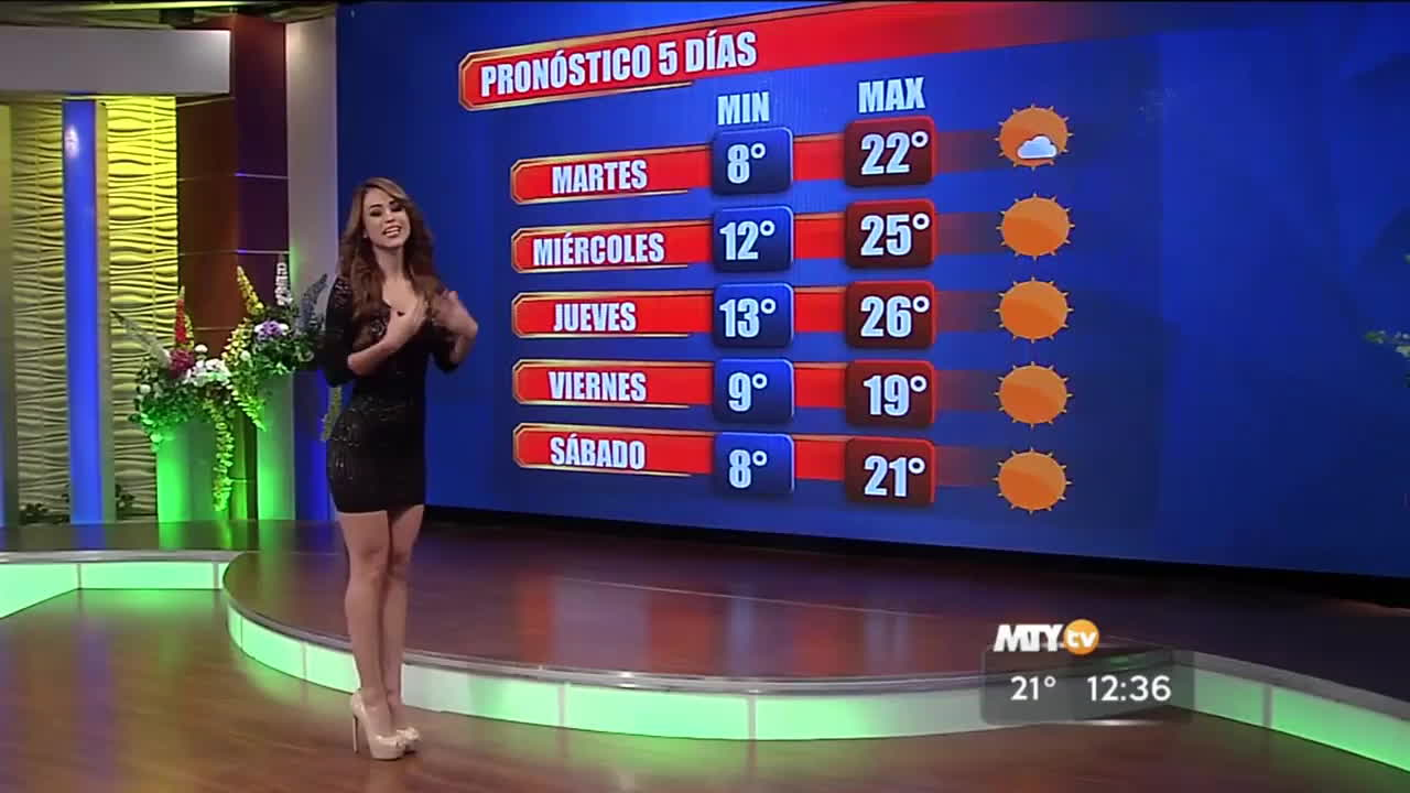 hot weather channel girls, hot weather girl, newsbabes, Yanet Garcia /r/NewsBabes GIFs