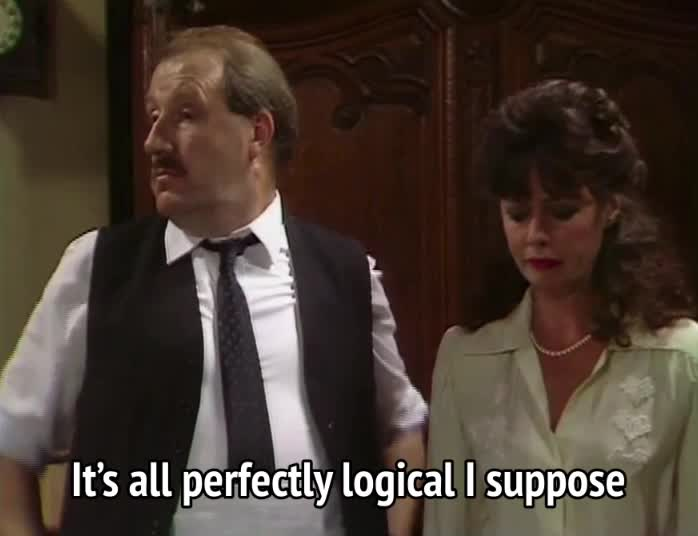 allo allo - It's all perfectly logical I suppose GIFs
