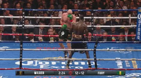 Watch wilder knockdown GIF on Gfycat. Discover more related GIFs on Gfycat