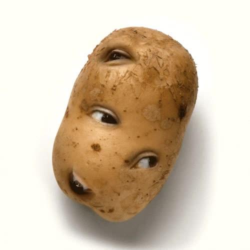 Watch and share Potato GIFs on Gfycat