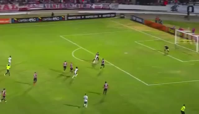 Watch and share Gol Zé Roberto Palmeiras GIFs on Gfycat