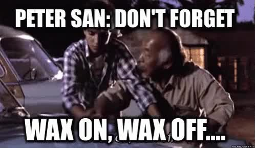 Watch and share Wax On Wax Off GIFs on Gfycat