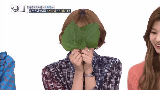 Nếu cả 9 đóa hoa Twice cùng thả thính Aegyo dễ thương, bạn sẽ chọn con tim hay nghe lí trí?