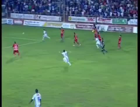 Watch and share Montillo Gol Cruzeiro GIFs on Gfycat