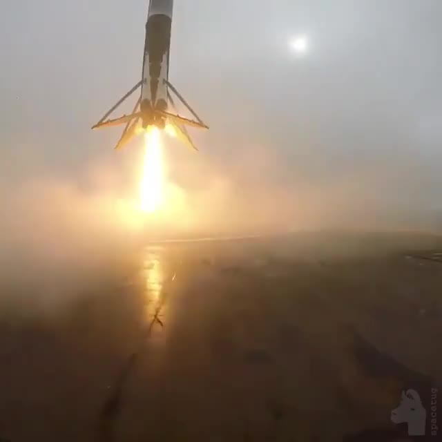 Watch Falcon Landing (reallifedoodles) GIF on Gfycat. Discover more reallifedoodles, yesyesyesno GIFs on Gfycat