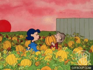 Watch and share Pumpkin Carving GIFs on Gfycat