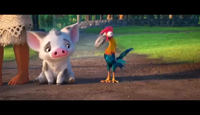 Moana 2016 Chicken Eating The Rock Gif Find Make Share