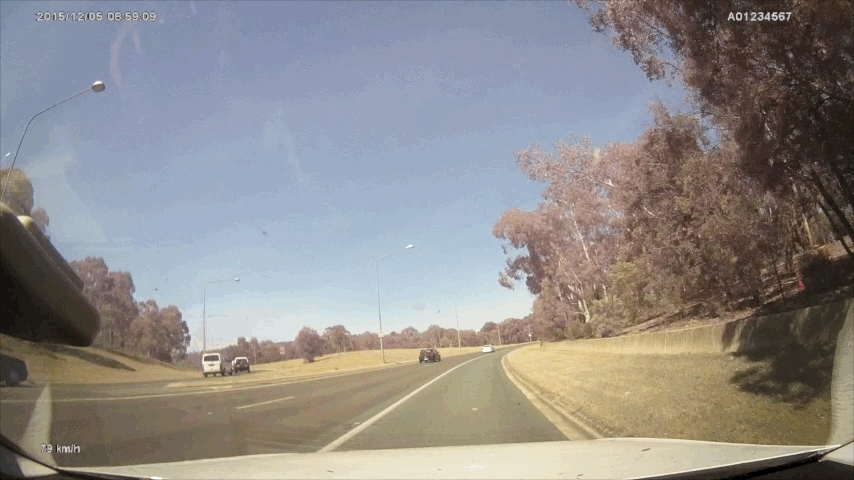 canberra, friends, While driving around Parliament House (reddit) GIFs