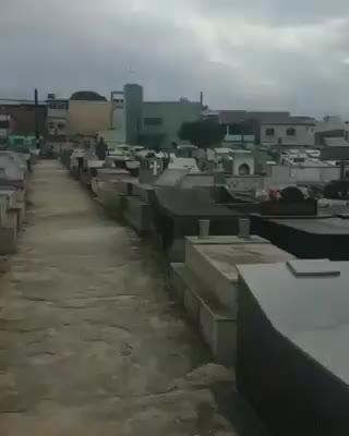 cemiterio GIFs