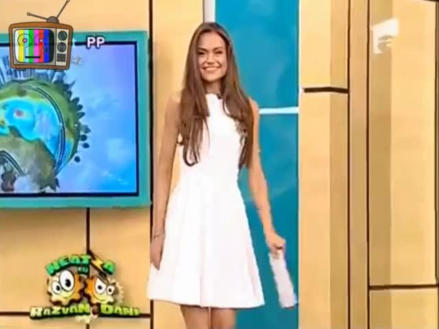 Watch Embarrassed Upskirt GIF on Gfycat. Discover more HappyEmbarrassedGirls, gfycat GIFs on Gfycat