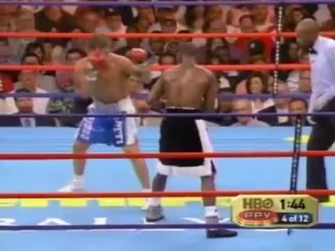 Watch Floyd Mayweather Jr.  vs  Arturo Gatti (reddit) GIF on Gfycat. Discover more related GIFs on Gfycat
