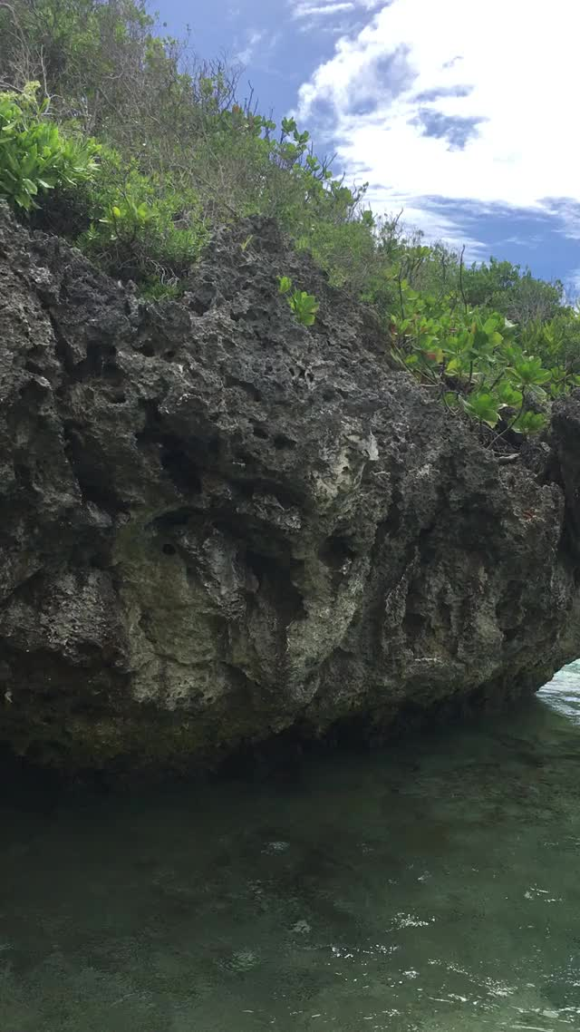 Watch and share Guam GIFs on Gfycat
