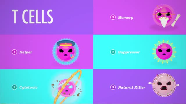 Watch and share Immune System GIFs and Crash Course GIFs on Gfycat