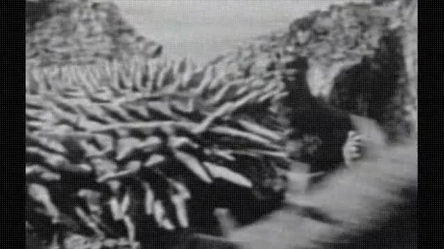 Watch 1955 GODZILLA RAIDS AGAIN GIF on Gfycat. Discover more related GIFs on Gfycat