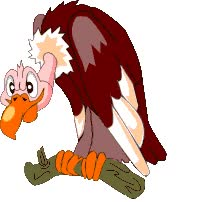 Watch and share Buzzard From animated stickers on Gfycat