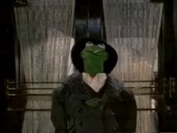 Watch and share Mygifs Kermit Kermit The Frog The Muppets Jim Henson GIFs on Gfycat