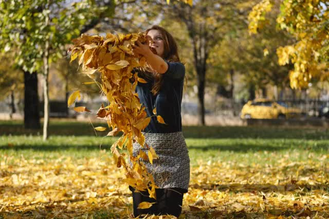 Watch and share Autumn GIFs and Leaves GIFs by veftenie on Gfycat