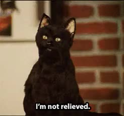 Watch and share 90s Are The Best GIFs and Salem Saberhagen GIFs on Gfycat