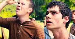 Watch Thomas and Gally | The Maze Runner Random Fandom Imagines GIF on Gfycat. Discover more Dylan O'Brien, Will Poulter, gally, gally imagine, imagine, imagines, maze runner, mazerunnermovie, the maze, the maze runner, the maze runner imagine, thomas, thomas imagine, tmr, tmr gally, tmr imagine, tmr thomas GIFs on Gfycat