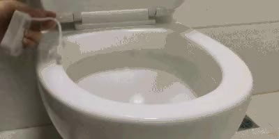 Watch toilet-1 GIF on Gfycat. Discover more related GIFs on Gfycat