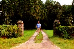 Watch this curated GIF by The GIF Smith (@sannahparker) on Gfycat. Discover more Forrest Gump, bye, byeee, g2g, gotta go, run away, running, see ya, tom hanks GIFs on Gfycat