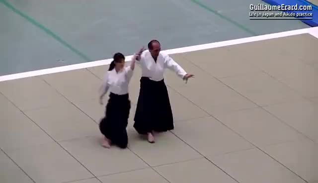 Aikido - Tada Hiroshi Shihan - 51st All Japan Aikido Demonstration 2013 GIFs
