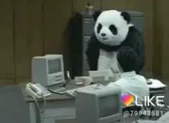 Panda nervoso (copiei dos Gifs)