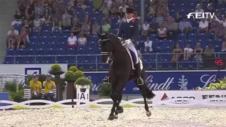 Watch and share Charlotte Dujardin GIFs and Glock's Undercover GIFs on Gfycat