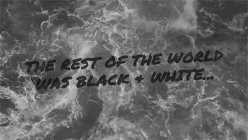 Watch and share Black And White Gif GIFs and Out Of The Woods GIFs on Gfycat
