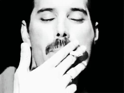 Watch and share Freddie Mercury GIFs and Celebs GIFs by mylocat1 on Gfycat