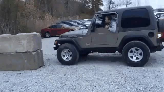 Watch and share Trunk GIFs by notlydia on Gfycat