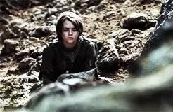 Watch this arya stark GIF on Gfycat. Discover more arya stark, game of thrones, got, gotedit, maisie williams, rory mccann, sandor clegane GIFs on Gfycat