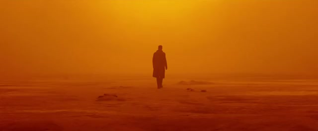 Watch and share Blade Runner 2049 GIFs by KOBAKZOOK on Gfycat