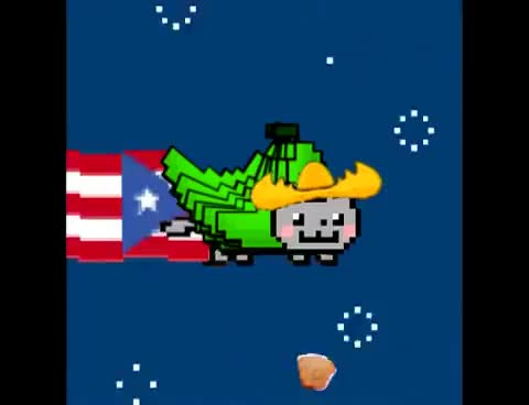 Watch this nyan cat GIF on Gfycat. Discover more Nyan Cat, Puerto Rican, nyan cat, puerto rican GIFs on Gfycat