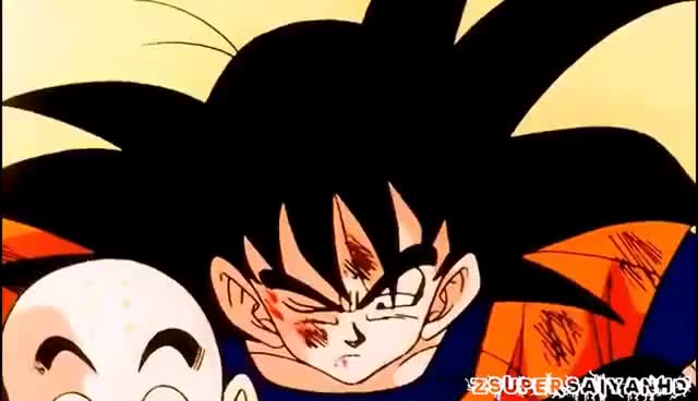 Watch and share Dragon Ball Z GIFs on Gfycat